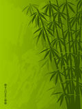 Bamboo. Abstract floral background with a bamboo. Vector illustration Royalty Free Stock Photo