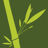 Bamboo. Green bamboo leaf. Vector illustration stock illustration