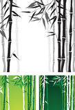 Bamboo. Backgrounds in 3 color variations royalty free illustration