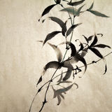 Bamboo. Chinese ink painting of bamboo on old grunge art paper Stock Photo