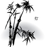 Bamboo. In oriental ink painting, vector illustration in greyscale mode Royalty Free Stock Photo