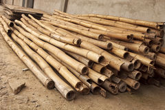 Bamboo. Pile of cut and dried bamboo used for construction support in Ghana Africa Royalty Free Stock Image