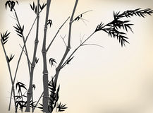 Bamboo. Old Chinese bamboo hand drawing,in a foggy forest Stock Photo