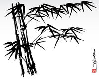 Bamboo 3 Stock Image