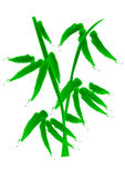 Bamboo. A vector, illustration for bamboo, decoration for chinese new year, its means grow, improve Royalty Free Stock Images