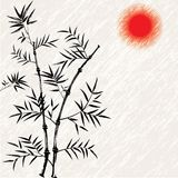 Bamboo. Bamboo japanese vector asian illustration. Art traditional. Chinese background with red sun Royalty Free Stock Photo