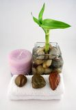 Bamboo. A bamboo branch, a purple candle and some stones Royalty Free Stock Photo