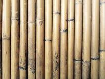 bamboo загородка Стоковая Фотография RF
