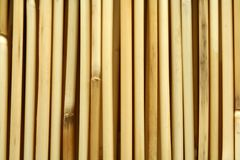 Bamboo. A shot of bamboo vertical pattern Stock Photography