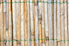 Bamboo. Background royalty free stock photo