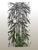Bamboo. Hand drawn vector image of bamboo Royalty Free Stock Image