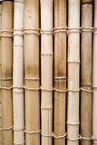 Bamboo. Fragment of a fencing made of a bamboo Royalty Free Stock Image