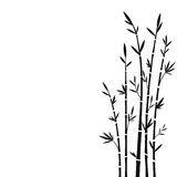 Bamboo. Vector silhouette of bamboo trees vector illustration