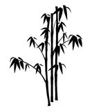 Bamboo. Silhouette Bamboo tree on isolated royalty free illustration