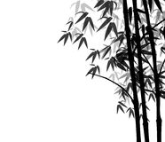 Bamboo. Silhouette Bamboo tree on isolated background using designed by illustrator royalty free illustration