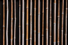 Bamboo. Yellow/brown dry bamboo wall closeup, Kobe, Japan Royalty Free Stock Images