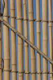 Bamboo. Cover with diagonal line Royalty Free Stock Photography
