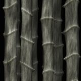 Bamboo abstract art Stock Photography