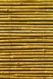 Bamboo  abstract background Royalty Free Stock Photography