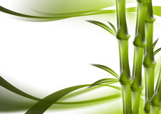 Bamboo and abstract background Stock Image