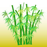 Bamboo (AI format available). Illustration of a bamboo on yellow background vector illustration
