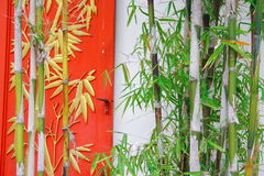 Free Bamboo And Window Stock Photos - 3461773
