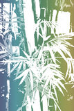 Bamboo Asian Abstract Background Wallpaper Stock Photography
