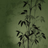 Bamboo. Authors illustration in Stock Photos