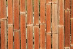 Bamboo Back Ground Royalty Free Stock Photos