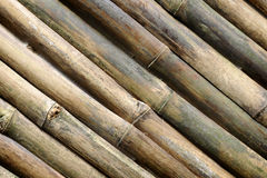 Bamboo Background Royalty Free Stock Photo