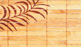 Bamboo background Stock Photography