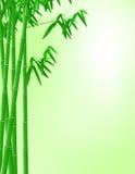 Bamboo background. Illustration of green bamboo tree background Stock Photo