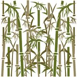 Bamboo background. Royalty Free Stock Images