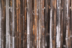 Bamboo background. Wood texture with natural patterns Stock Images