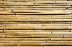 Bamboo background Royalty Free Stock Image