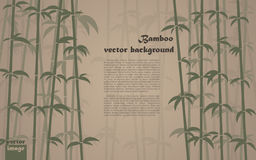 Bamboo background. Vector brown bamboo background. EPS10 image Stock Photography