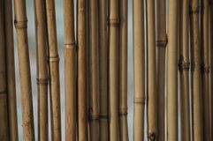 Bamboo background Stock Photos