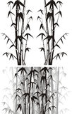 Bamboo  background - black and white Royalty Free Stock Image