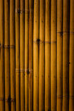 Bamboo background. Close up bamboo can be background or texture Stock Images