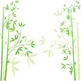 Bamboo  background,  illustration Stock Photos