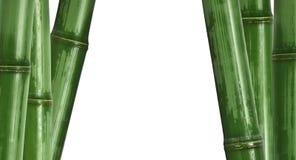 Bamboo background isolated on white Royalty Free Stock Images