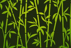 Bamboo background japanese asian plant wallpaper grass. Bamboo tree vector pattern.  royalty free illustration