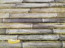 Bamboo background. Bamboo leaf background wallpaper Royalty Free Stock Photography