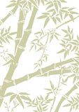 Bamboo Background. Bamboo leaves and branches template in soft green and white Stock Image