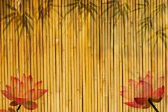 Bamboo background with lotus Stock Photo