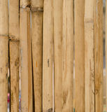 Bamboo background. The old bamboo wall background Royalty Free Stock Image