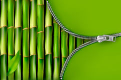 Bamboo background with open zipper Royalty Free Stock Images