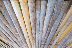 Bamboo background. Pic of old bamboo fence Stock Images