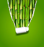Bamboo background with ripped paper. Vector Stock Photo