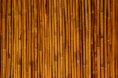 Bamboo for background  texture Stock Photos